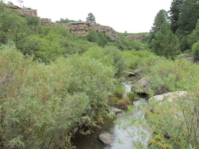 Cherry Creek at Castlewood Canyon State Park.