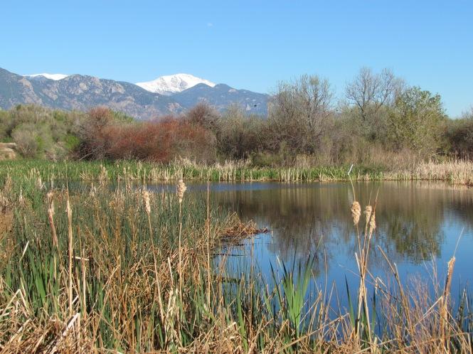 An Ode To Fountain Creek Regional Park Tanja Britton