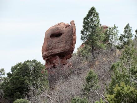 ? elephant head