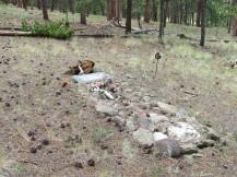 Adeline's Grave