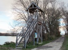 Altrheinsee observation tower