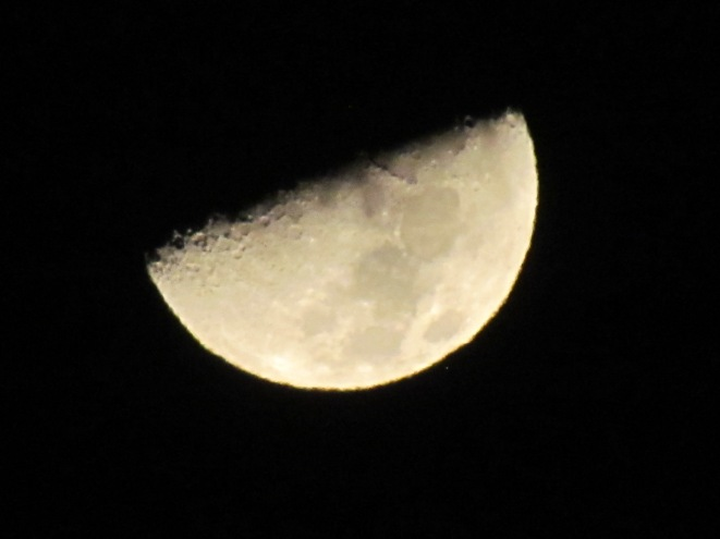 Waxing First Quarter Moon (Half Moon)