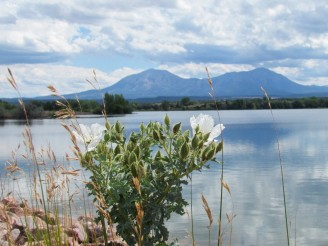 View of the Spanish Peaks from Lathrop State Park