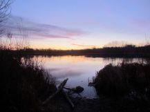 Sunrise at McCrae Reservoir/Sonnenaufgang