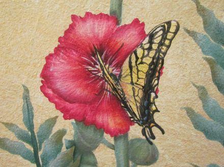 Swallowtail butterfly/Schwalbenschwanz